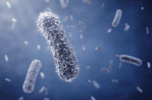 脇の細菌のイメージ